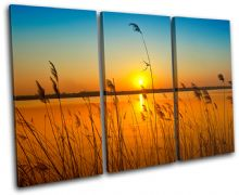 corn field Sunset Seascape - 13-0288(00B)-TR32-LO